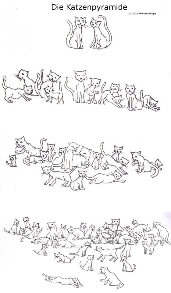 Aus zwei Katzen können in 7 Jahren theoretisch über 400.000 Katzen werden!
